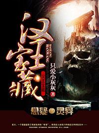 《汉王宝藏》主角古董小瑞最新章节章节目录小说
