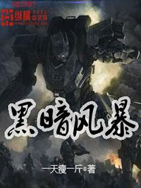 《黑暗风暴》主角杨冲李安小说免费试读章节目录