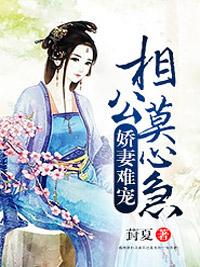 杨七郎小说